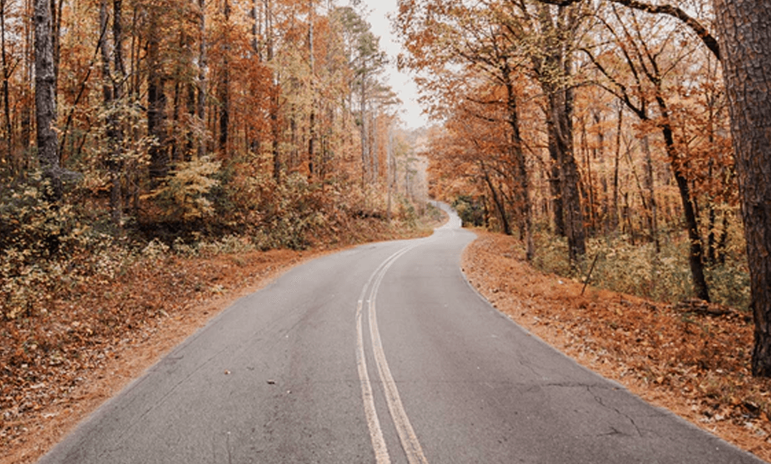 5 Tips For A Smooth Transition Into Fall